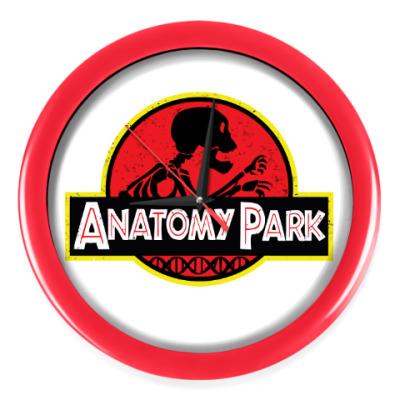 Настенные часы Anatomy Park