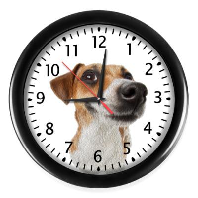 Настенные часы ДРТ