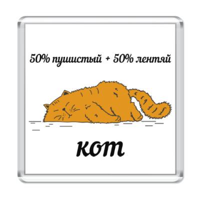Магнит 50% пушистый + 50% лентяй это кот