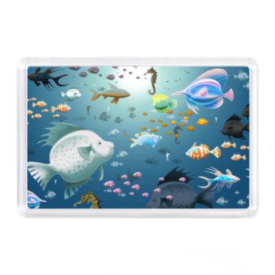 Магнит Морские рыбы