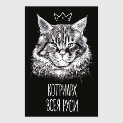 Постер Постер 20 х 30 см