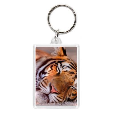 Брелок Спящий тигр