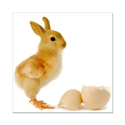 Наклейка (стикер) Курица-кролик