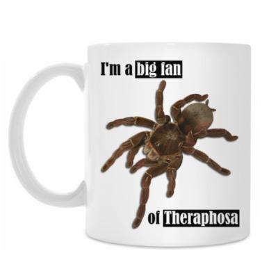 Theraphosa
