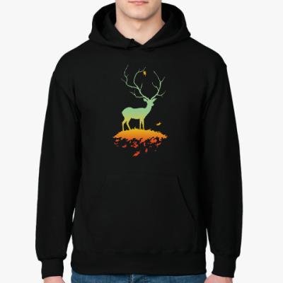 Толстовка худи Флора и Фауна (Осень)